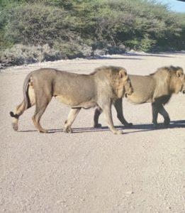 Namibie00015