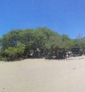 Namibie00028