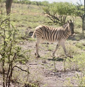 Namibie00033